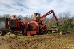 land-clearing-new-jersey-219