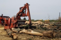 land-clearing-new-jersey-455