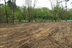 land-clearing-new-jersey-486
