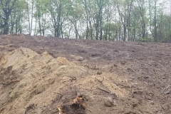 land-clearing-new-jersey-507